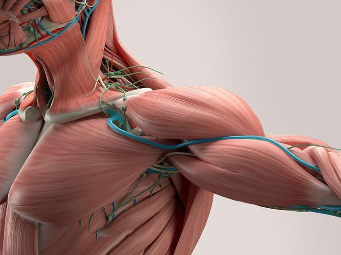shoulder pain rehab el paso tx.