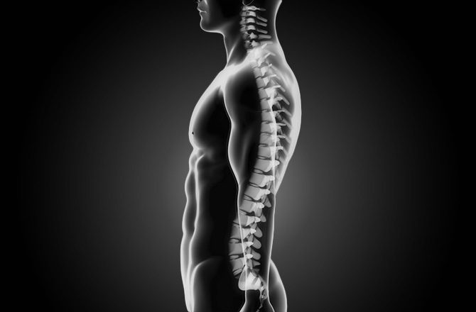 chiropractor bad posture 3d model with spine el paso tx