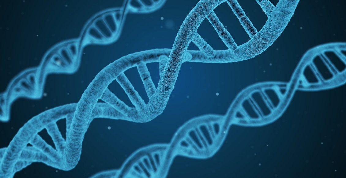 Biochemistry Of DNA Methylation   El Paso, TX Chiropractor