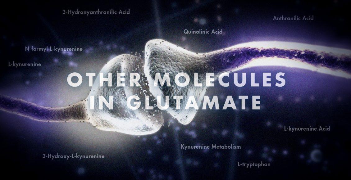 Functional Neurology: Other Molecules in Glutamate   El Paso, TX Chiropractor