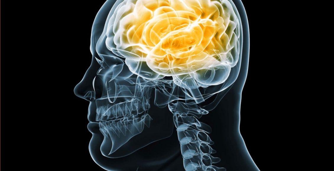 Functional Neurology: Brain Health and Obesity   El Paso, TX Chiropractor